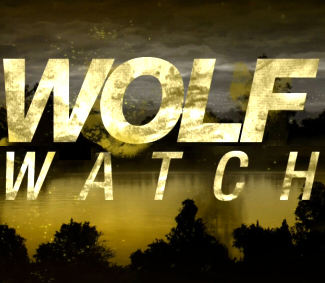 Maya Eshet Wolf Watch